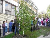 Sađenje mladog drveća pratili su učenici nižih razreda